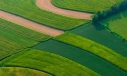 teren_agricol_62914100