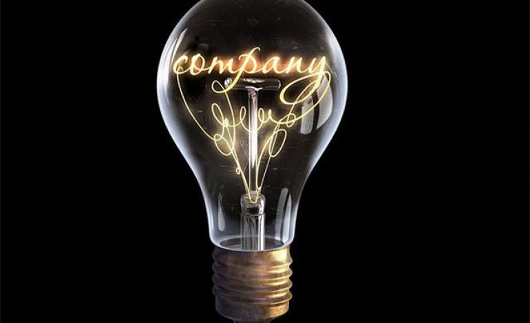 Marii jucatori din energie cred ca afacerile vor scadea, dar per total profitul va fi mai mare anul acesta