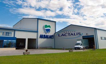 Albalact, profit record inainte să fie preluata de francezii de la Lactalis