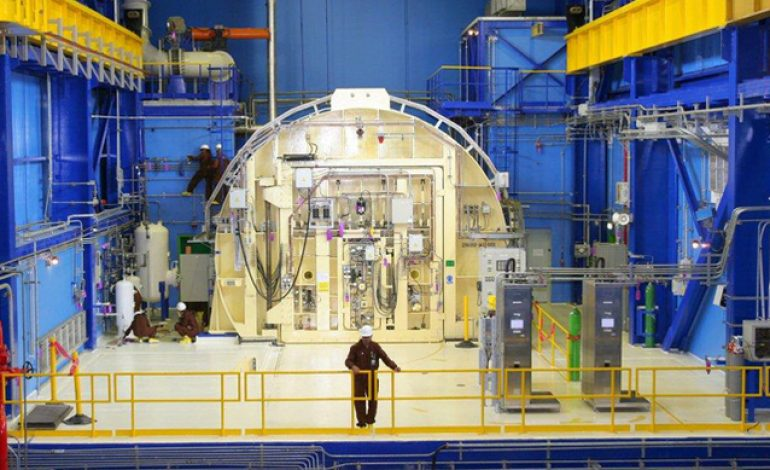Nuclearelectrica raporteaza o pierdere de 37,8 milioane de lei in S1