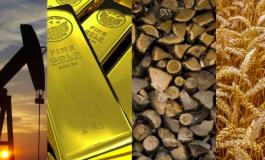 Cum tranzactionezi la bursă mărfuri/metale prețioase ?
