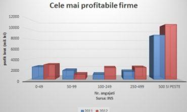 Firmele care aduc cele mai mari profituri din România
