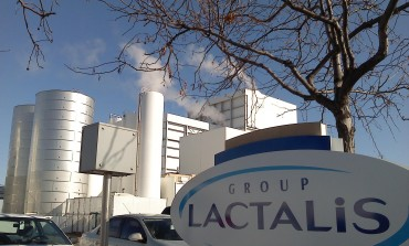 Francezii de la Lactalis se extind in Est si intra in actionariatul unei firme din Georgia