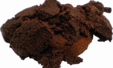 BEI CAFEA ACASA? Zece motive sa nu mai arunci zatul de cafea
