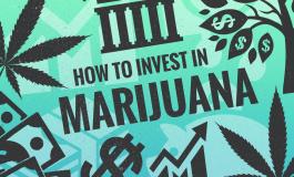 Cum investești în Industria de Canabis Terapeutic?